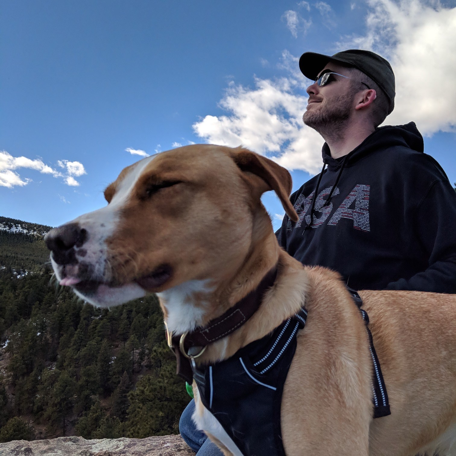 Home - Animal Rescue of the Rockies