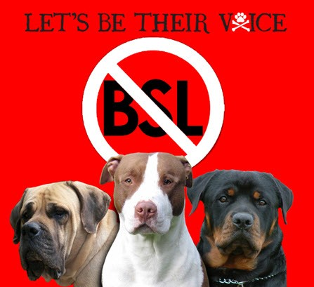 Denver Area Breed Bans - Animal Rescue of the Rockies 367f20f6704a