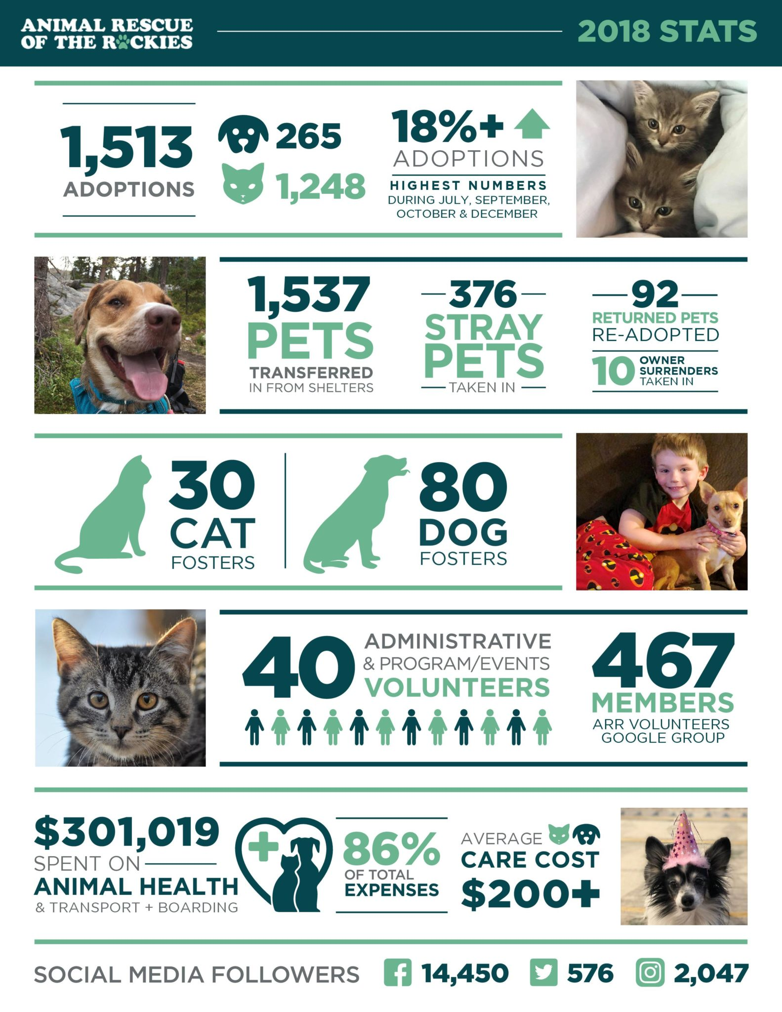 Home Animal Rescue Of The Rockies